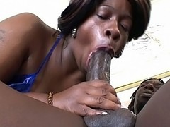 Watch hot bbw ebony Dimples as she takes on a horny black muffin with a monstrous cock and a huge appetite for bbw pussy smacking. Dimple looks so hot with her sweet face and huge knockers as she goes down on her knees to work a cock with her mouth.